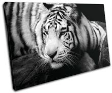 Tiger Animals - 13-1019(00B)-SG32-LO